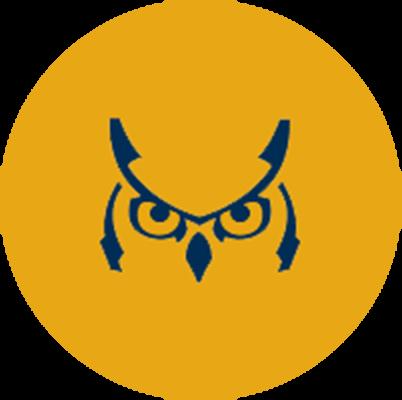 sunwise capital owl logo
