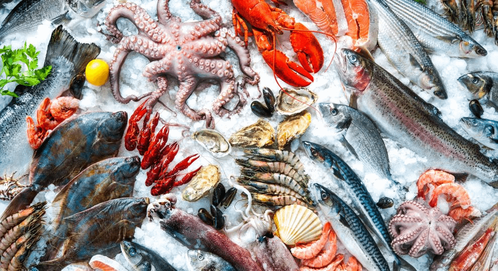 Fresh seafood on ice by Alexander Raths https://www.wgbh.org/dining-out/2018/04/17/7-seafood-markets-in-boston-thatll-help-you-buy-fish-with-confidence