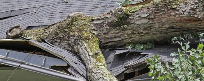 Damaged Roof Repair Services