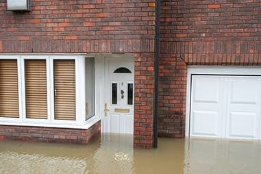What can Be Salvaged after a Flood?