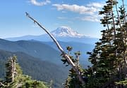 Mt Adams in Washington