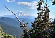 Mt Adams in Washington
