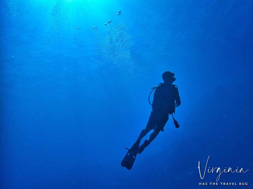 Diving on the big island of hawaii with Kona Honu Divers