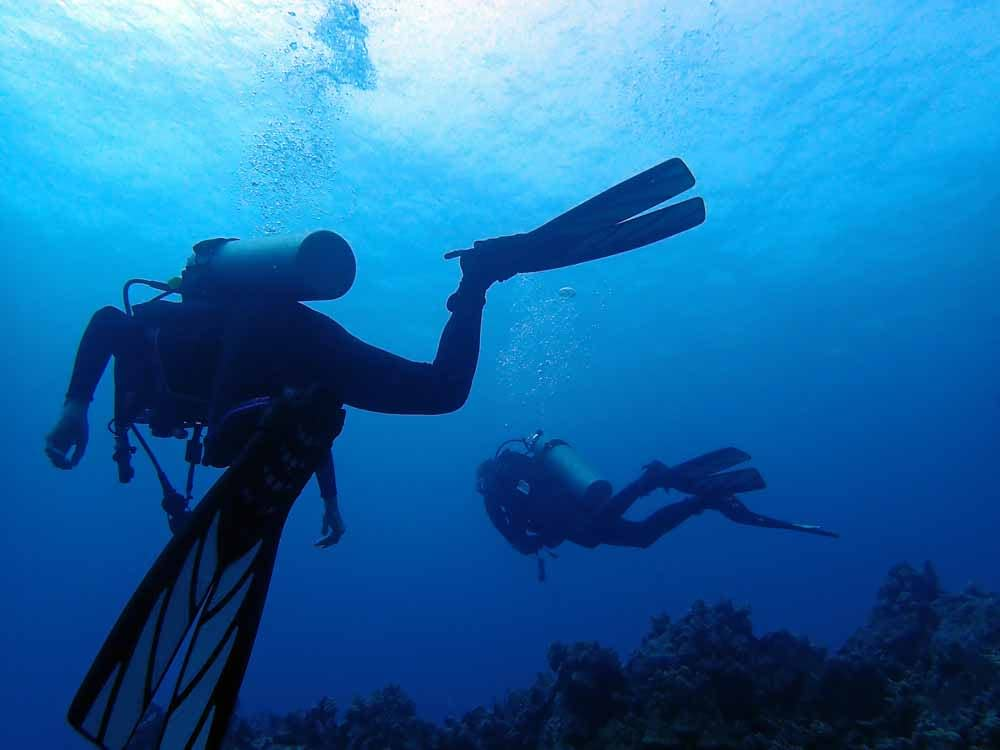 Scuba-Diving-Hawaii-Kona-Honu-Divers-37