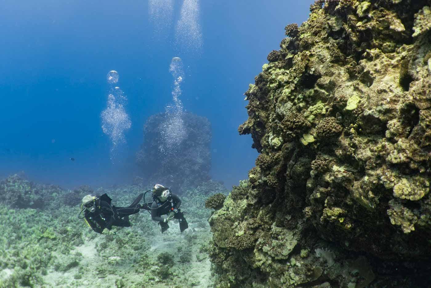 Scuba-Diving-Hawaii-Kona-Honu-Divers-20