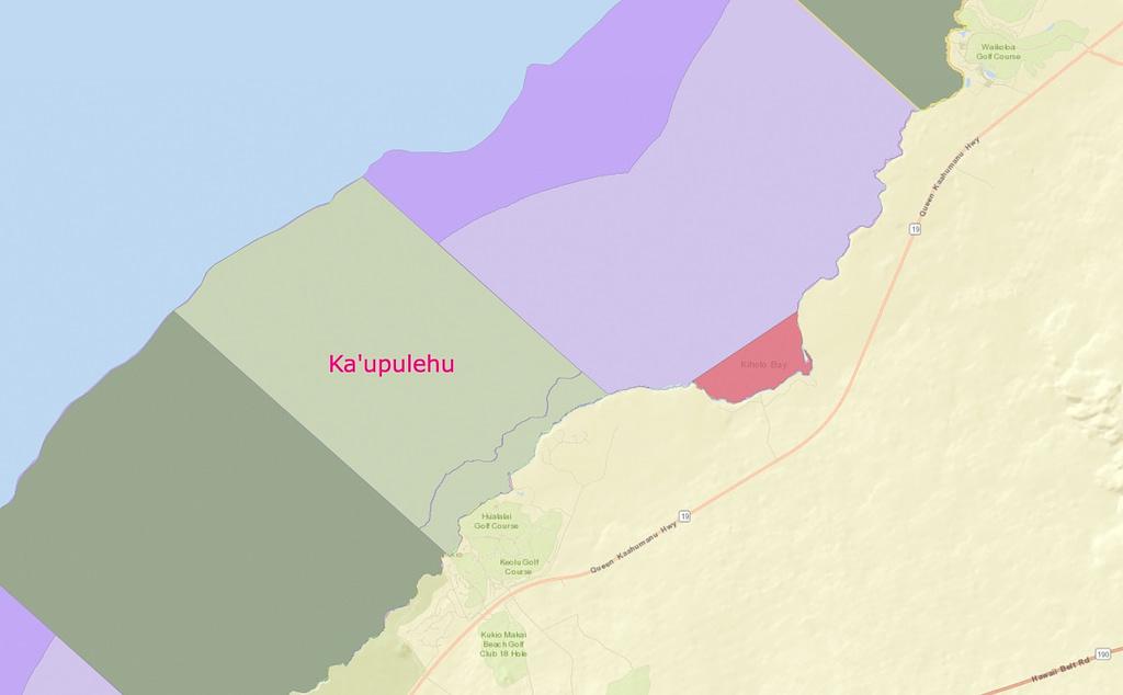 Spearfishing-Big-Island-Ka'upulehu-4-seasons-kukio-not-permitted