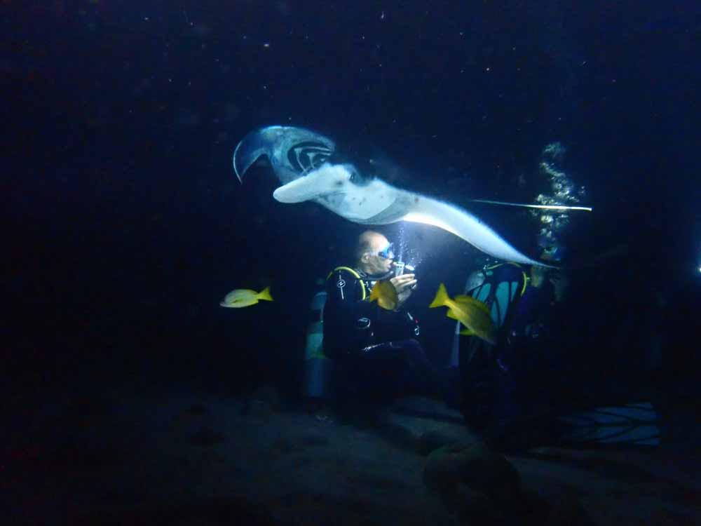 Scuba-Diving-Hawaii-Kona-Honu-Divers-32