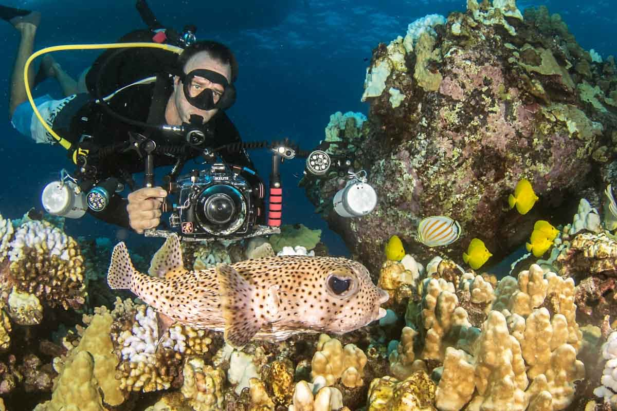 Scuba-Diving-Hawaii-Kona-Honu-Divers-19