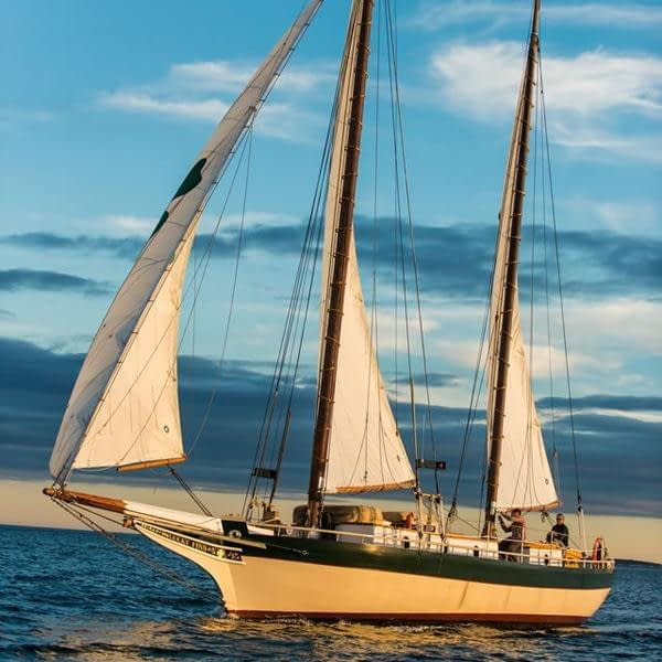 Introducing the Appledore Star