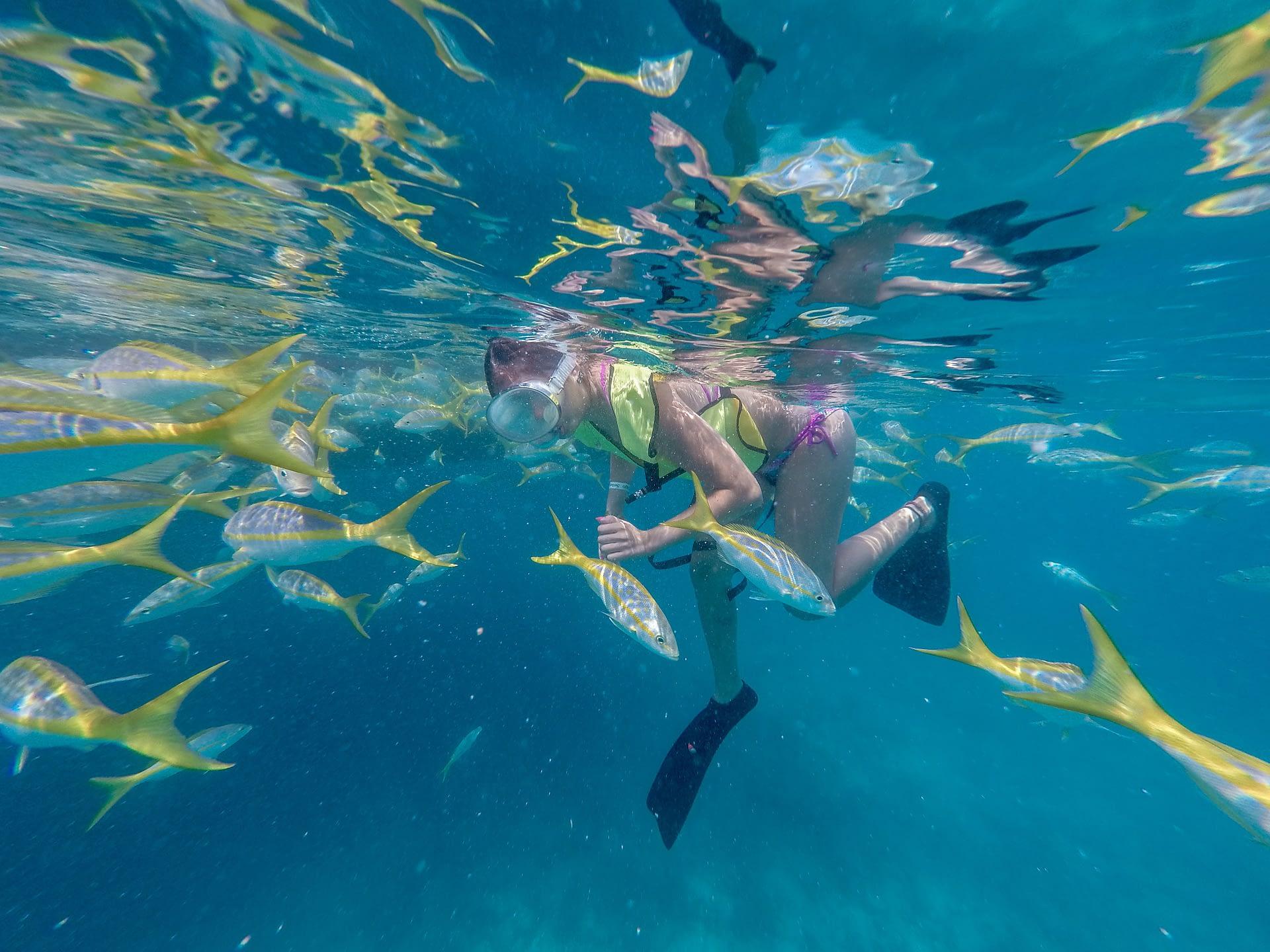 Key West Reef Snorkel – Morning