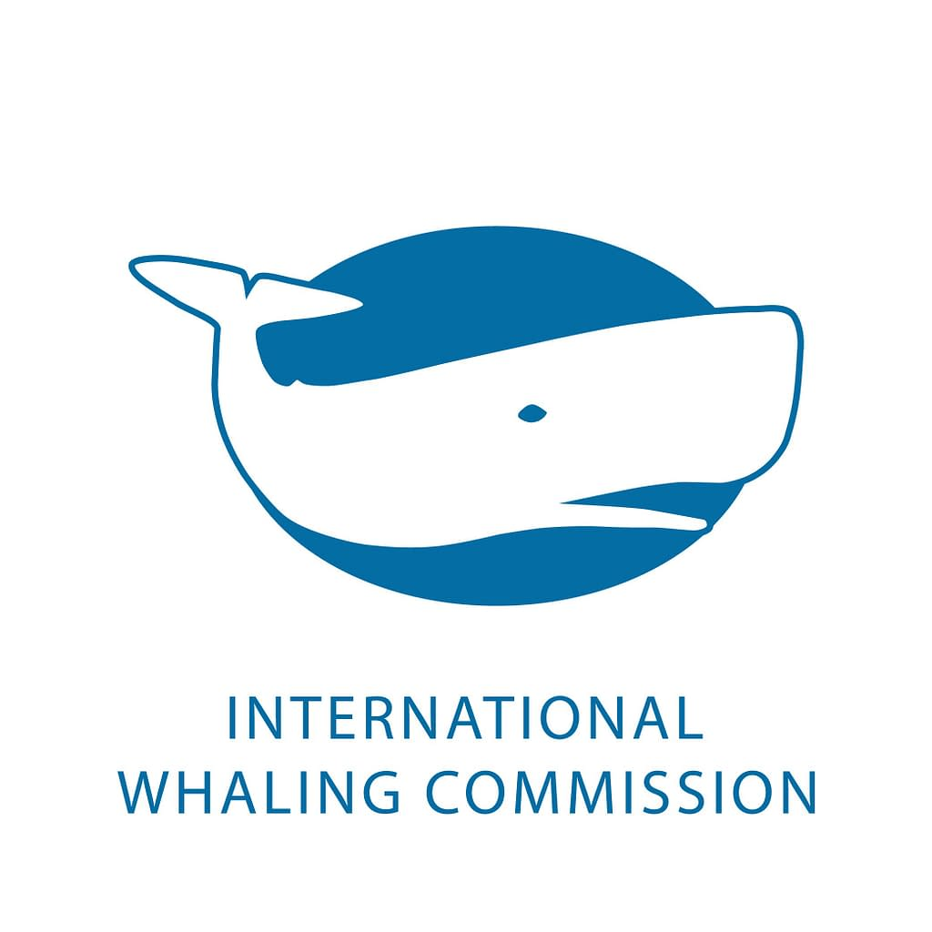MARINE TOURISM GOVERNANCE: FROM SEA TO SHINING SEA | Pacific Whale Foundation