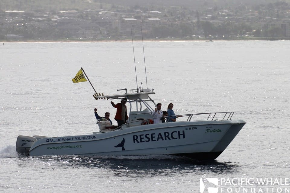 Ocean Protector, Pacific Whale Foundation's dedicated research vessel.