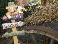 Fall Outdoor Activities Around Cape May
